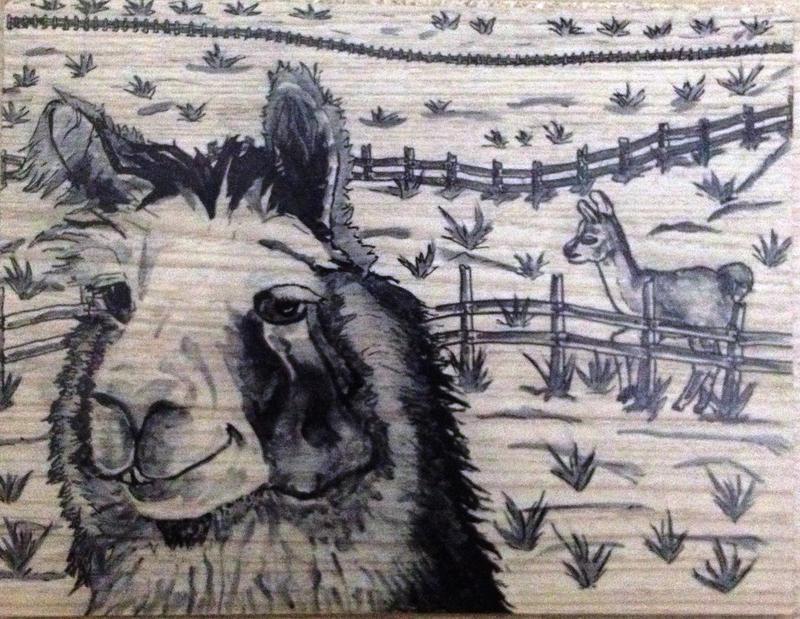 Drama llama by AdemilsonM