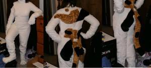 Calico cat bodysuit