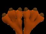 Wile E. Coyote Feet Close Up 3D 4