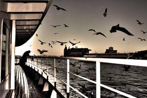 istanbul... by betuldemircioglu