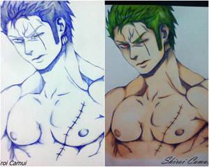 Roronoa Zoro: One Piece (Pen and Pencil) 2