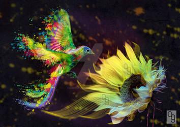 Colour Splash Bird