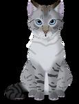 El Gato by CandyCone