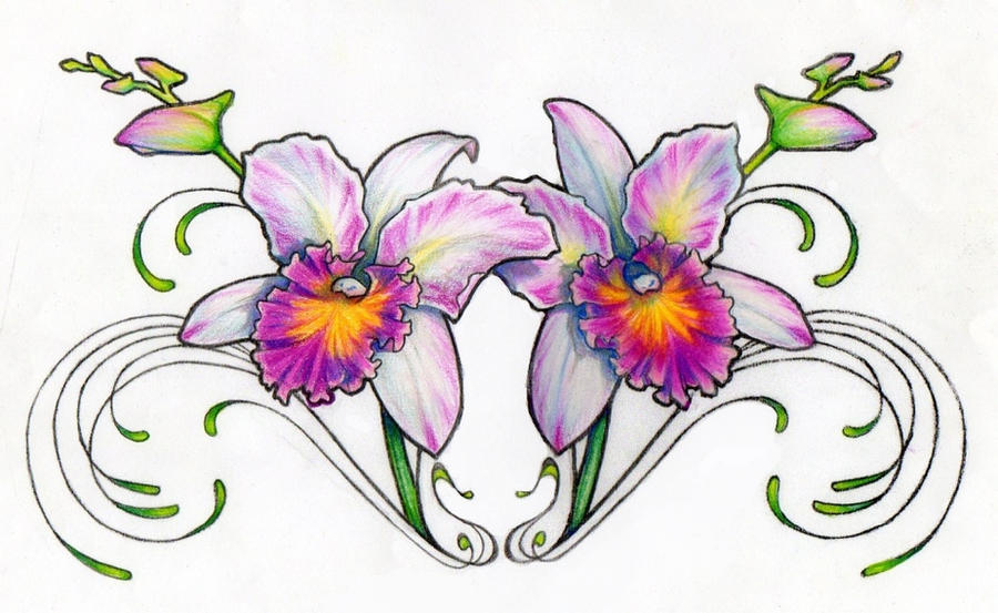 orchid flower drawing tattoo the image kid has it. Black Bedroom Furniture Sets. Home Design Ideas