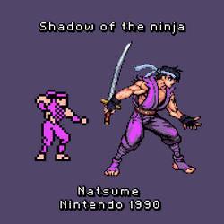 Shadow Of The Ninja,Hayate