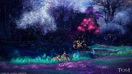 A magic tale - TERA Online