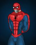 Patreon Reward: Spiderman