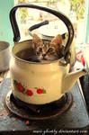 feline tea