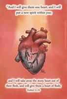 Stony Heart by eJcalado