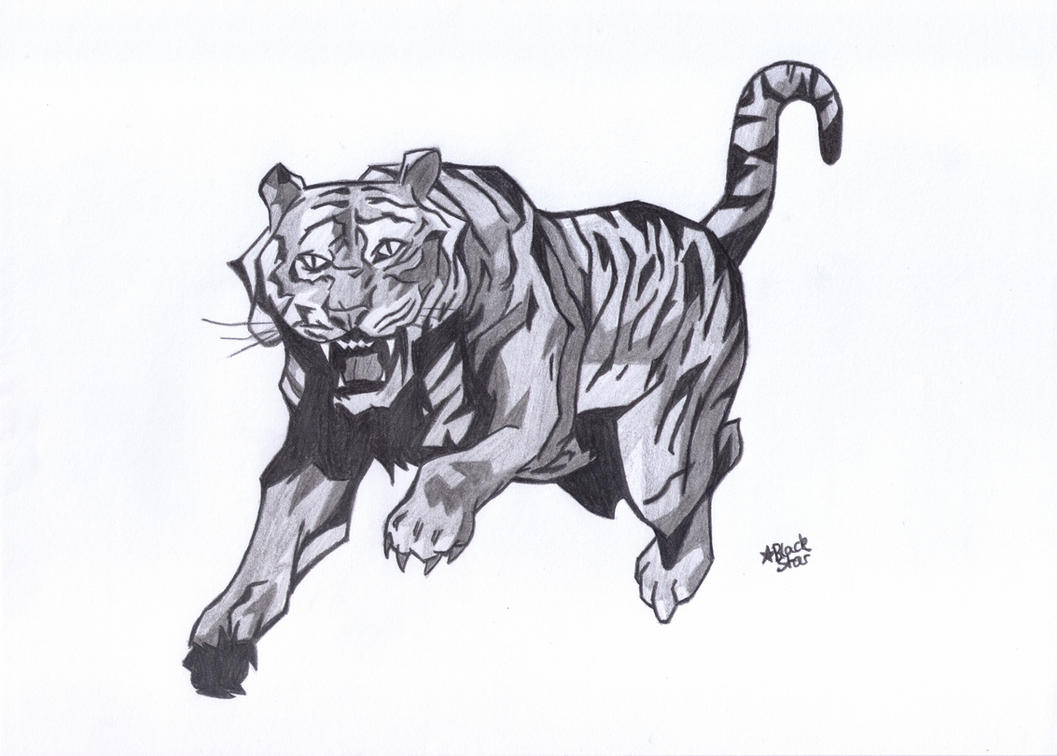 Comic-Tiger by BlackStarLGArt