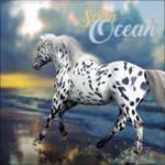 Satin Ocean