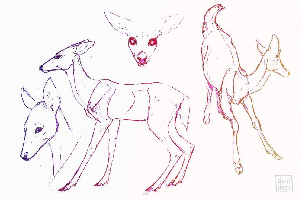 Deer study [part1] by dulldeer