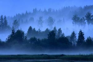 Blue Summer Night 1 by tenetsi