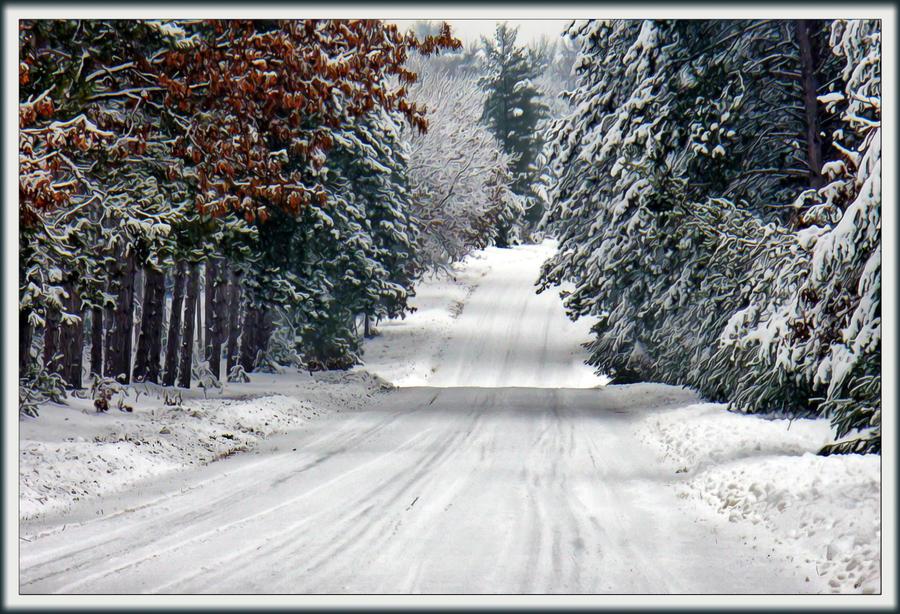 snow-laden by ariseandrejoice