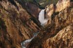 lower falls of Yellowstone