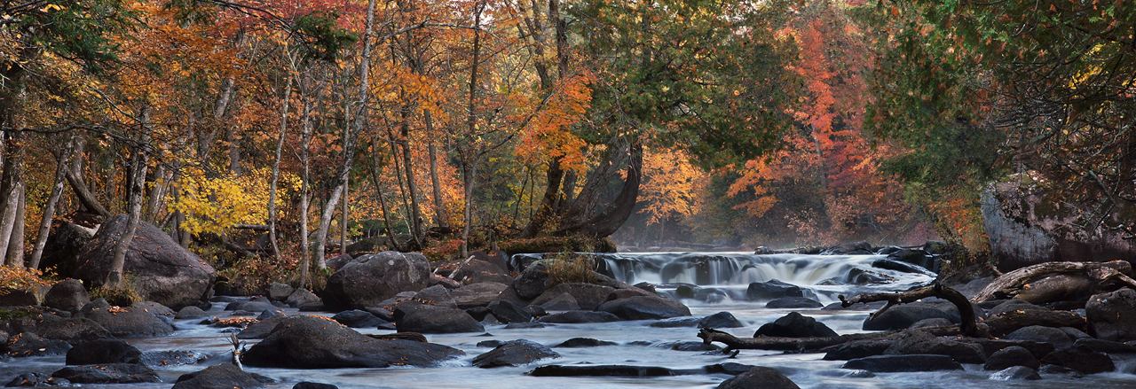 Leaf Peeping on the Peshtigo by ariseandrejoice