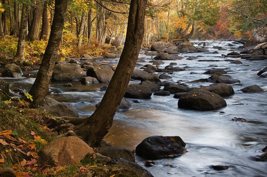 River Majesty by ariseandrejoice