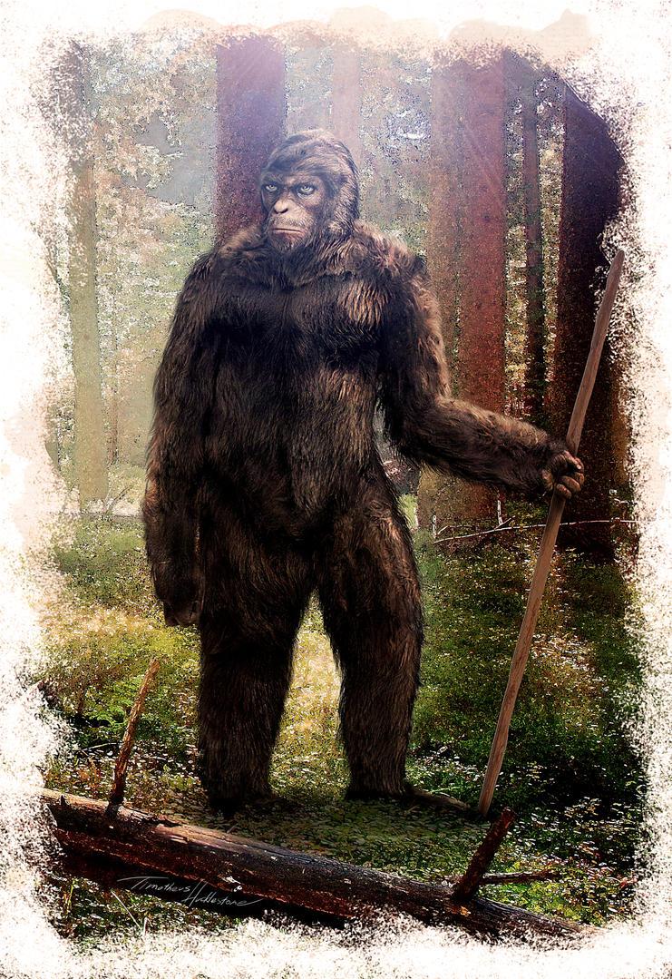 Bigfoot Arten