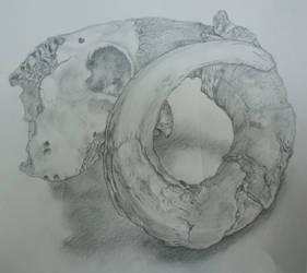 Horn of Plenty by Fachen