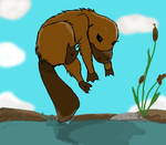 Animal #2: Platypus
