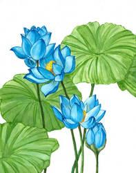 Blue Lotus Part 1 by laurenmegan-art