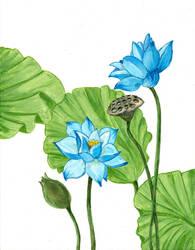 Blue Lotus Part 2 by laurenmegan-art