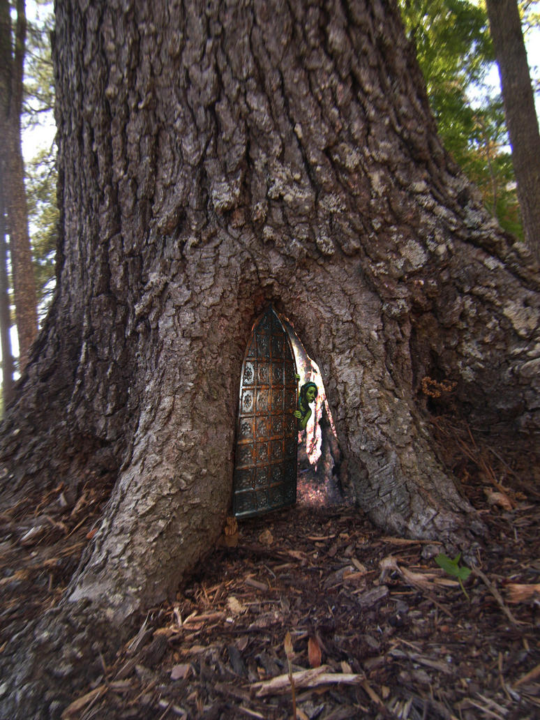 1000 images about fairy tree houses on pinterest fairy for Real fairy doors
