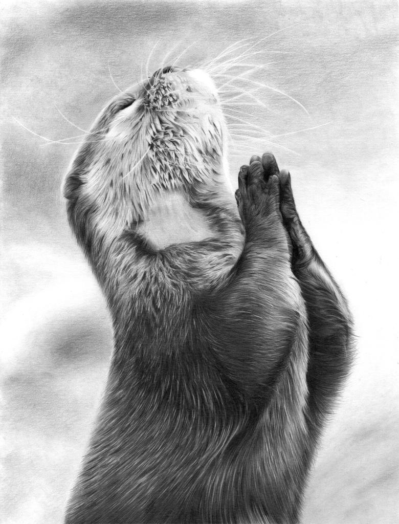 Mr Otter Praying by KevinPreston
