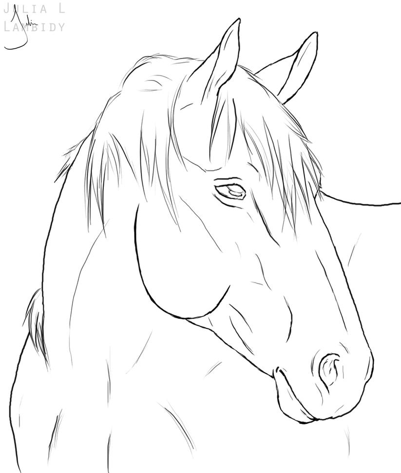 Line Drawing Animal Face : Horse lineart by lambidy on deviantart