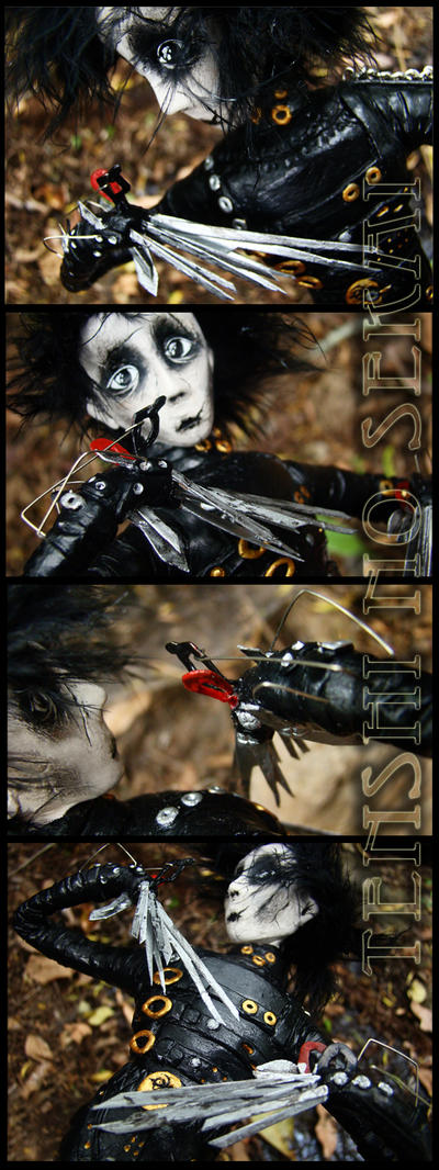 Scissorhands by AngelaBermudez