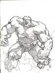 The Hulk by MannixFrancisco