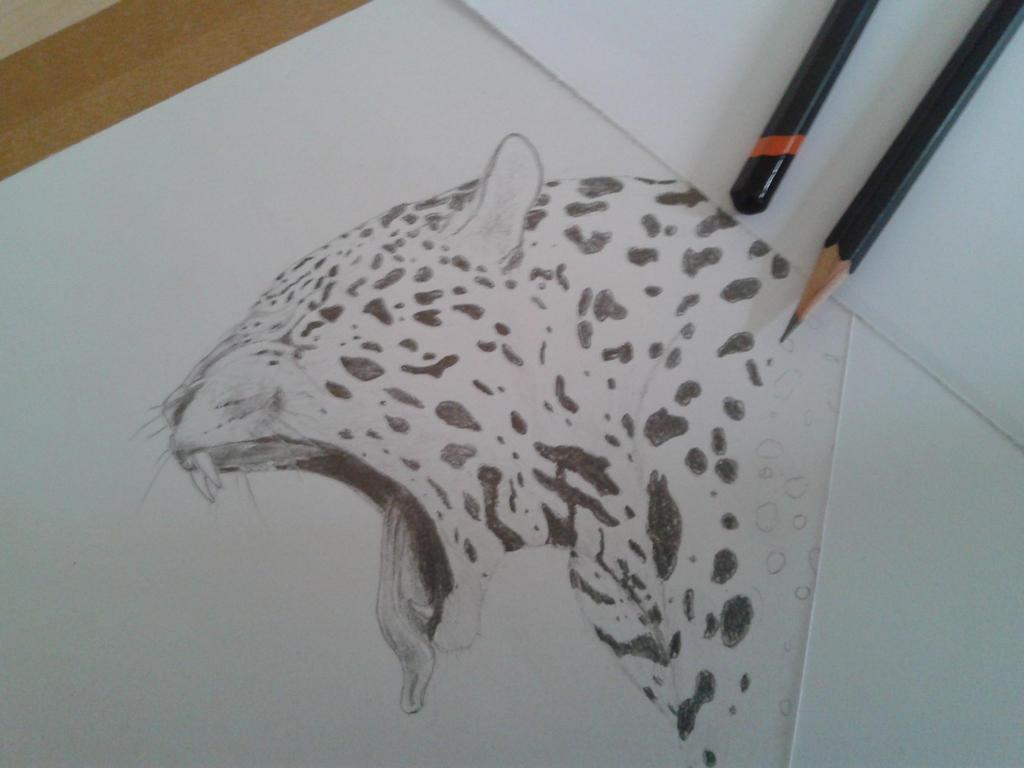 jaguar by darchii