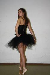 black swan stock 13