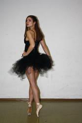 black swan stock 15