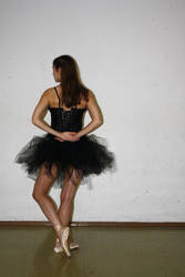 black swan stock 30