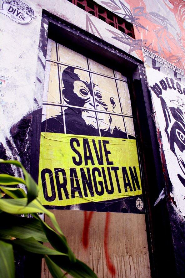 Save Orangutan street poster by racuntikus