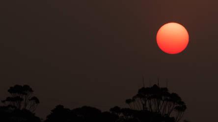 Bushfire sunset