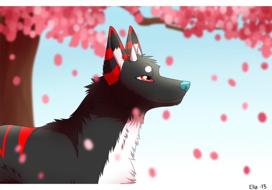 cherry blossoms by Pyttinski