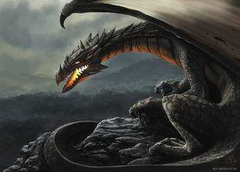 Dragon by thomaswievegg