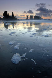 Lost Coast by enunez