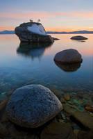 Bonsai Rock Winter by enunez