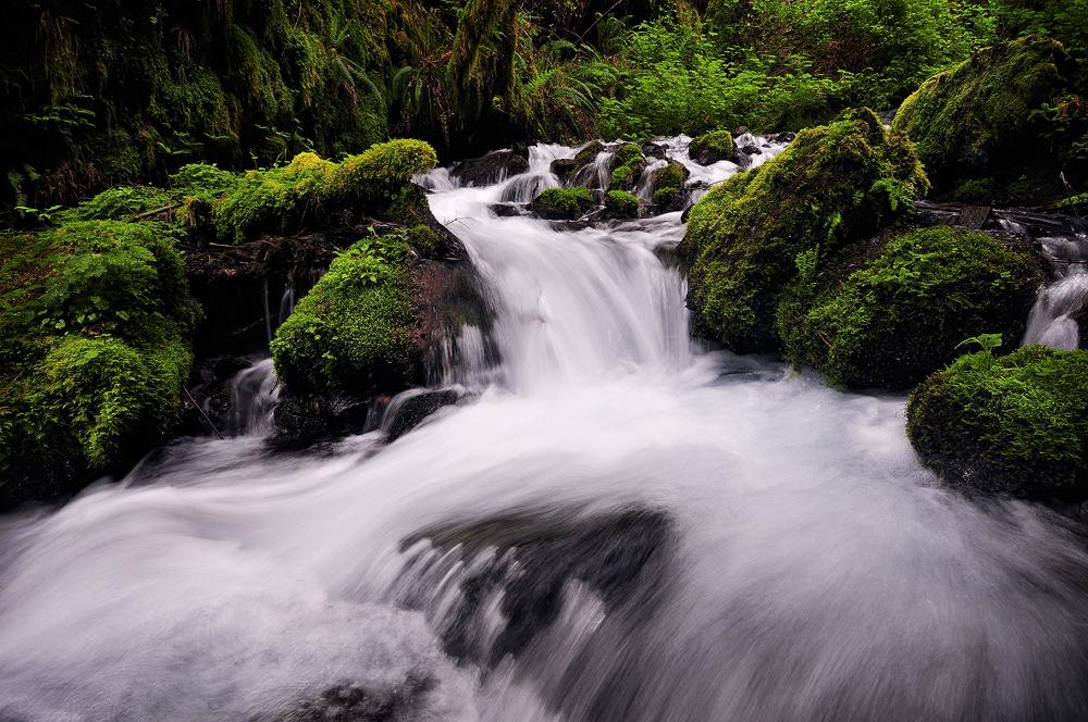 Curving Falls by enunez
