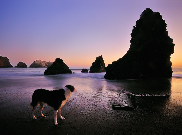 The Sunset Guardian by enunez