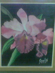 Orchid by LaVoj