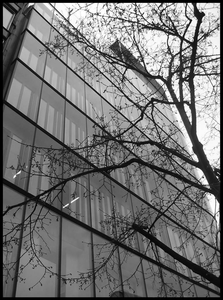 Urban calling... by ACM09