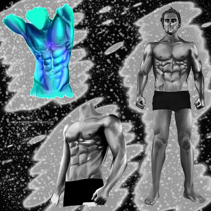 Male Anatomy Compilation by Razor-Crab