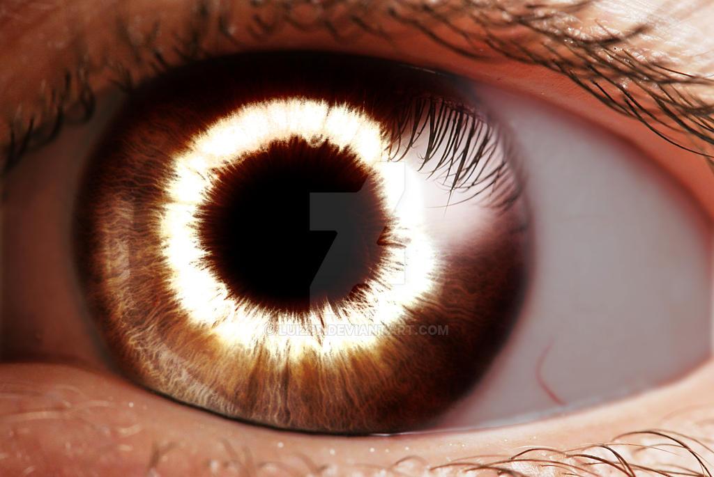 Eye by luizfe