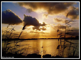 Silhouetting Sunset by BreeSpawn