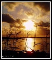 SunSet III by BreeSpawn