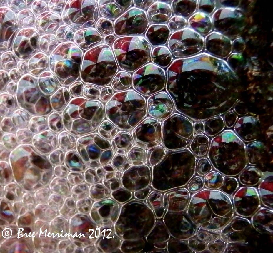 Native Bubbles by BreeSpawn